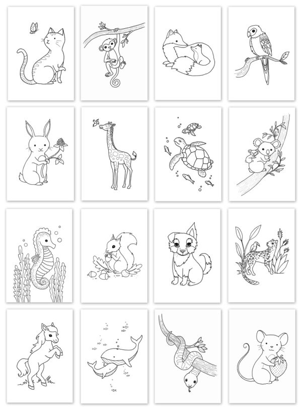 coloriages-animaux-ici-ailleurs-5