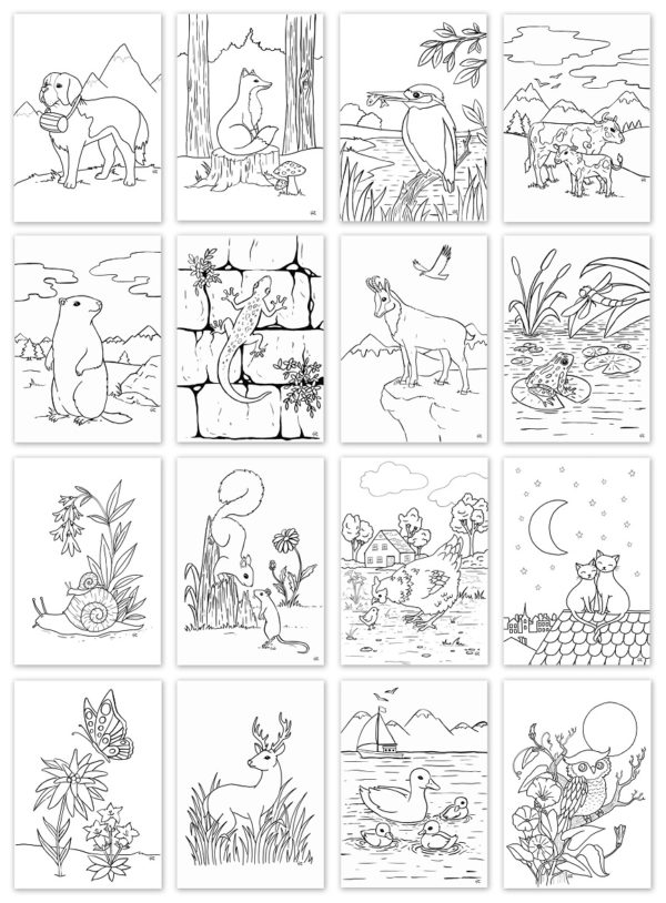 coloriage animaux suisse